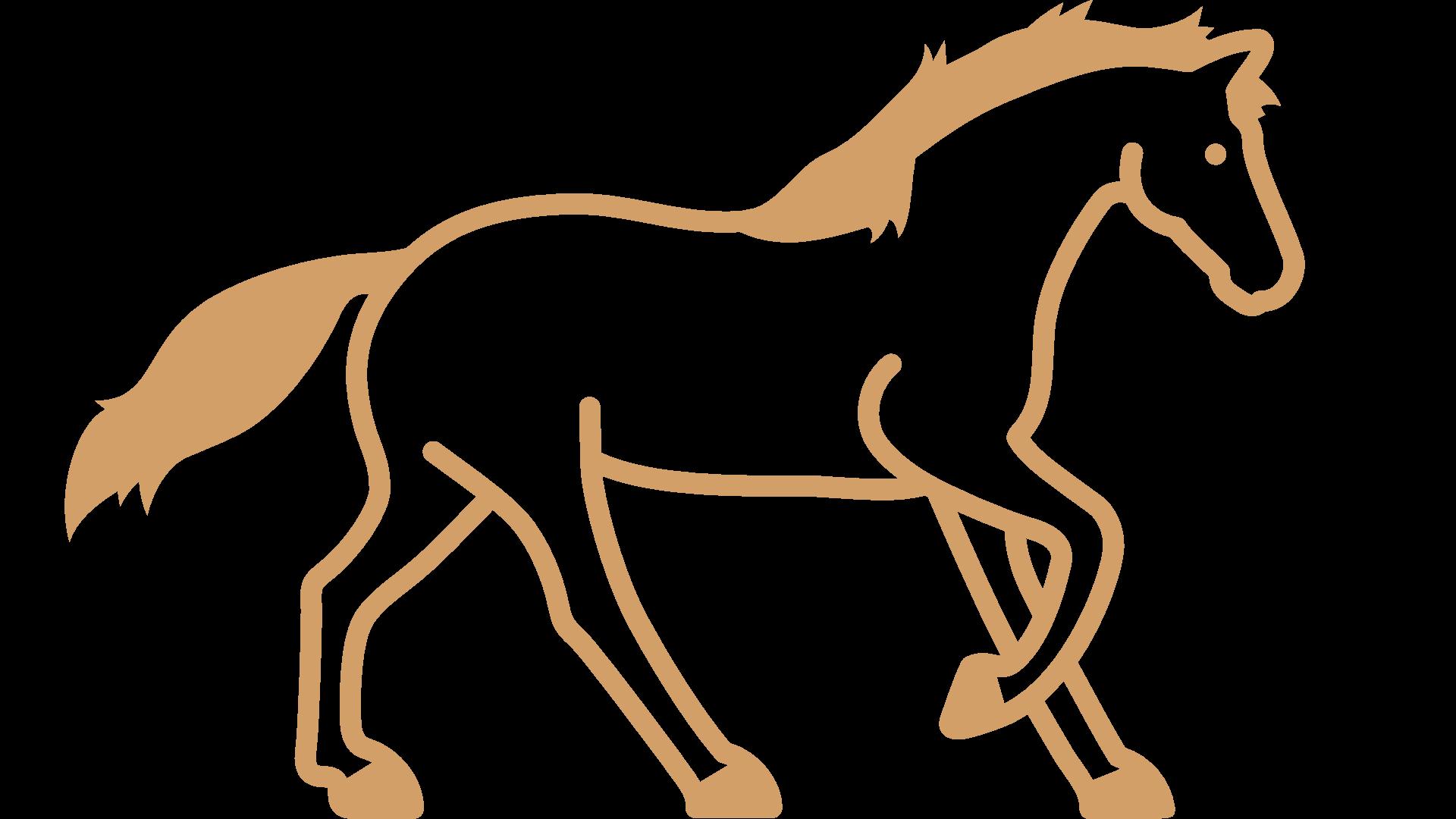 Talking_Horse_Farm_Reitunterricht_Icon